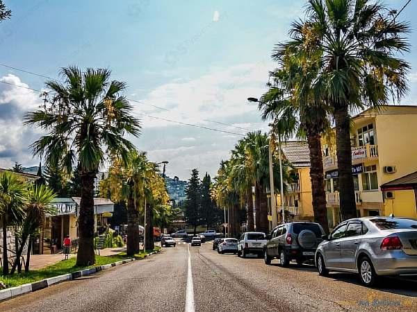 Пальмы в городе