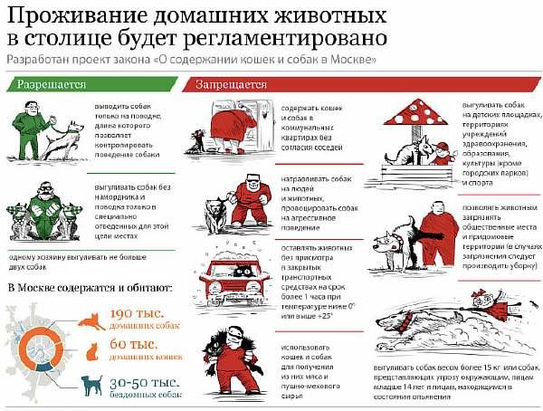 Правила выгула в Москве