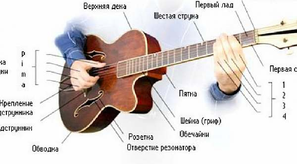 Схема гитары